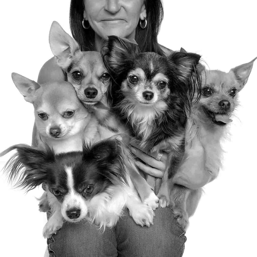woman with five dogs studio portrait black and white small dog photo